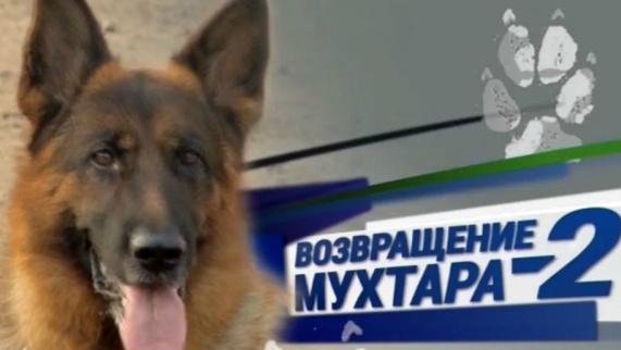 Возвращение Мухтара - 2. «Бюст» 25.07.2016
